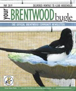 Your Brentwood Bugle - Current Issue